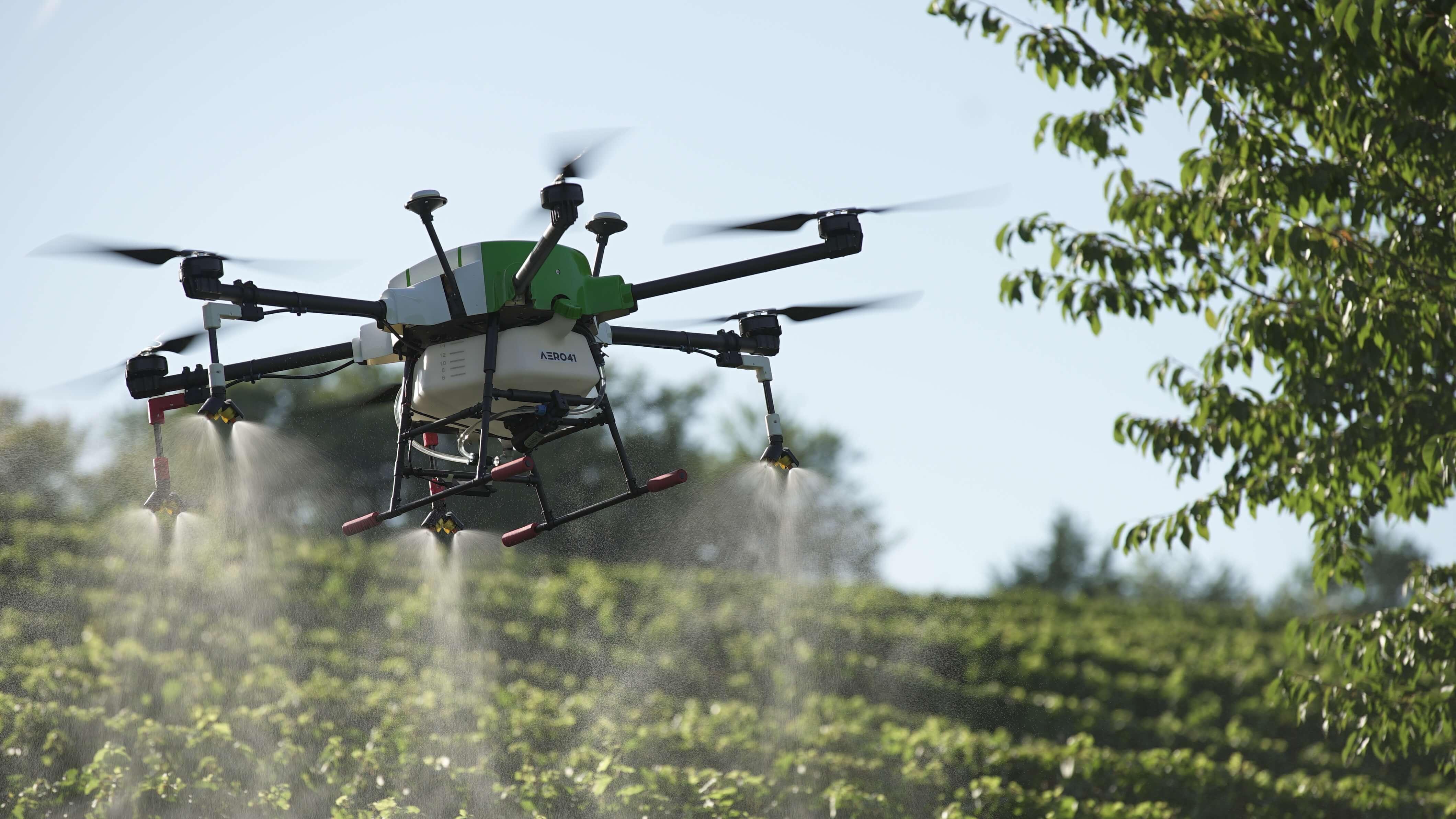 Drohne über Weingarten